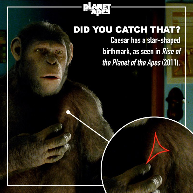 Planet Of The Apes At Apesmovies Twitter