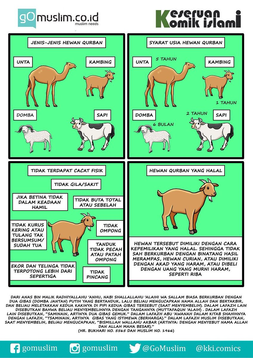 Hewan Qurban Vector : hewan, qurban, vector, Koleksi, Download, Gambar, Hewan, Kurban
