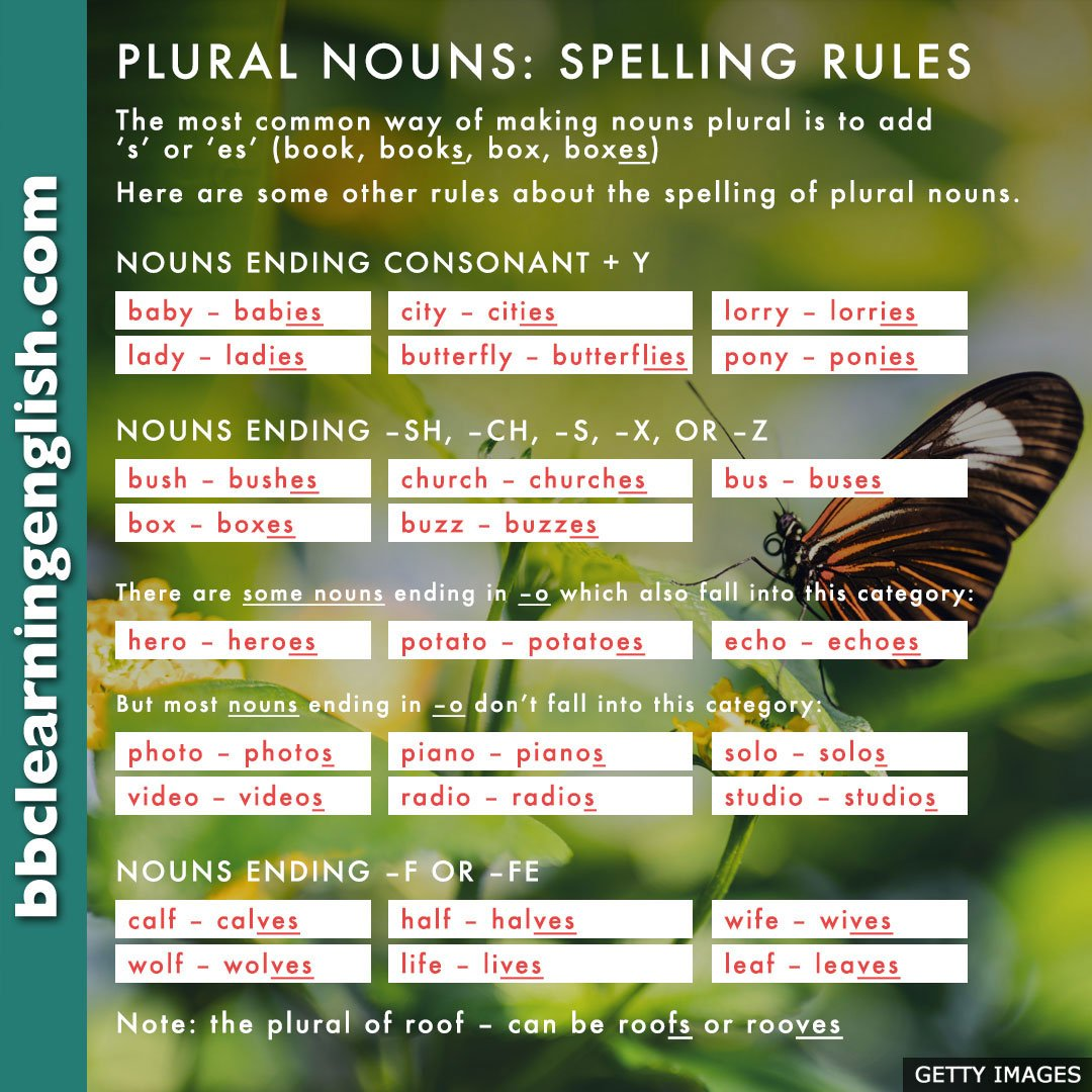 Luthfiannisahay Plural Of Butterfly In English