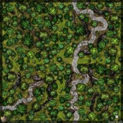 Dense Forest Battle Map 7