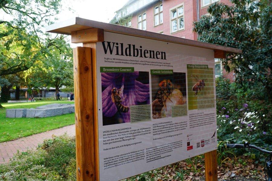 test Twitter Media - Bezirksamtsleiterin Sophie Fredenhagen hat am 15. Oktober 2019 um 16 Uhr im Innenhof des Harburger Rathauses eines von drei Insektenhotels im Bezirk #Harburg eingeweiht. 🐝🐞  zur Pressemeldung 👉 https://t.co/bRkbVTv0Mh 📸: Bezirksamt Harburg https://t.co/MupexJIHXS