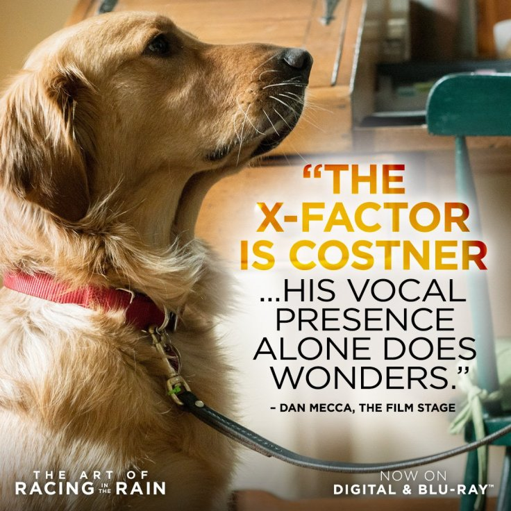 "Art of Racing Movie on Twitter: ""Only one man had the vocal chops to bring  our star pup Enzo to life. Hear Kevin ..."