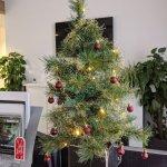 Speed4trade On Twitter It S Beginning To Look A Lot Like Christmas Bei Speed4trade Weihnachtet Es Schon Sehr Burodeko Weihnachtsbaumchen Weihnachtszeit Weihnachtsdeko Lichterkettengehenimmer Https T Co Nbofhmbqur