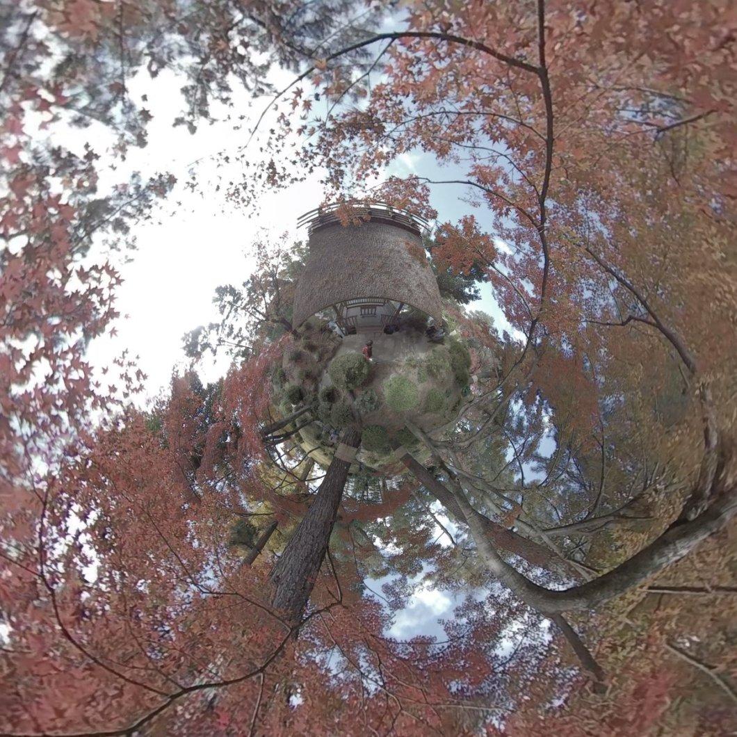 test ツイッターメディア - #広島 の名勝縮景園の #紅葉 を #360度カメラ で撮影して #リトルプラネット にしました  #littleplanet #tinyplanet #360 #360degrees #360度 #camera360 #360photography #photosphere #360view #360photo #lifein360 #insta360 #insta360onex #japan #hiroshima #広島旅行 https://t.co/LHuwDDudyr