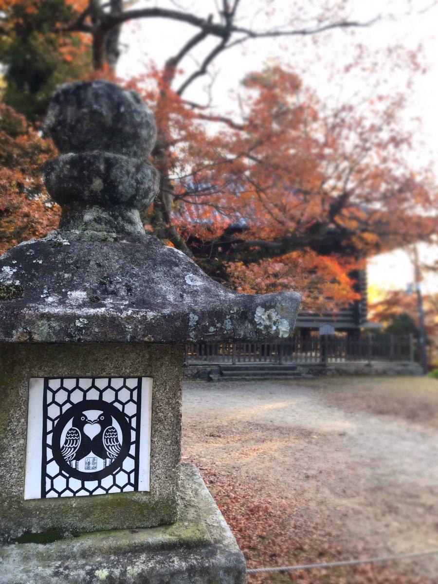 test ツイッターメディア - 「#手向山八幡宮 」 #御紋 は八幡さまのお遣い鳩が向かい合う姿になっています。  #奈良 #奈良観光 #奈良旅行  #ハト #ハート  #nara #narajapan  #tamukeyamahachimangu  #pigeon #dove #heart https://t.co/t4Ow2TWx12