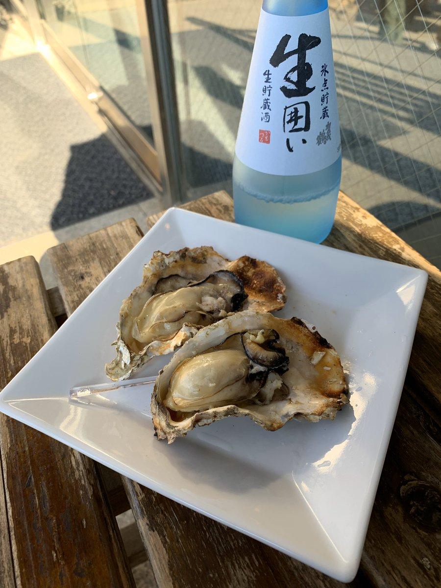 test ツイッターメディア - 本格的にシーズンインしまして、牡蠣の名産地(広島・宮島)に行ったということであれば食べねばなるまい…!  焼きガキ2個500円はそれなりのお値段ですが、粒もまあまあの大きさで満足…!サッとレモン汁ふりかけてちゅるりんといただきました。うまみ。 #ねもぱい広島 #広島旅行 #厳島神社 https://t.co/MshPIzEYvY https://t.co/YmEVVa7H2O