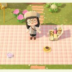 Picnic Mat Animal Crossing