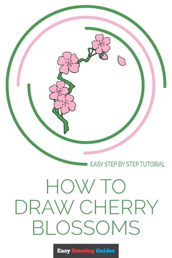 Cherry Drawing Easy : cherry, drawing, Drawing, Guides, Twitter:,
