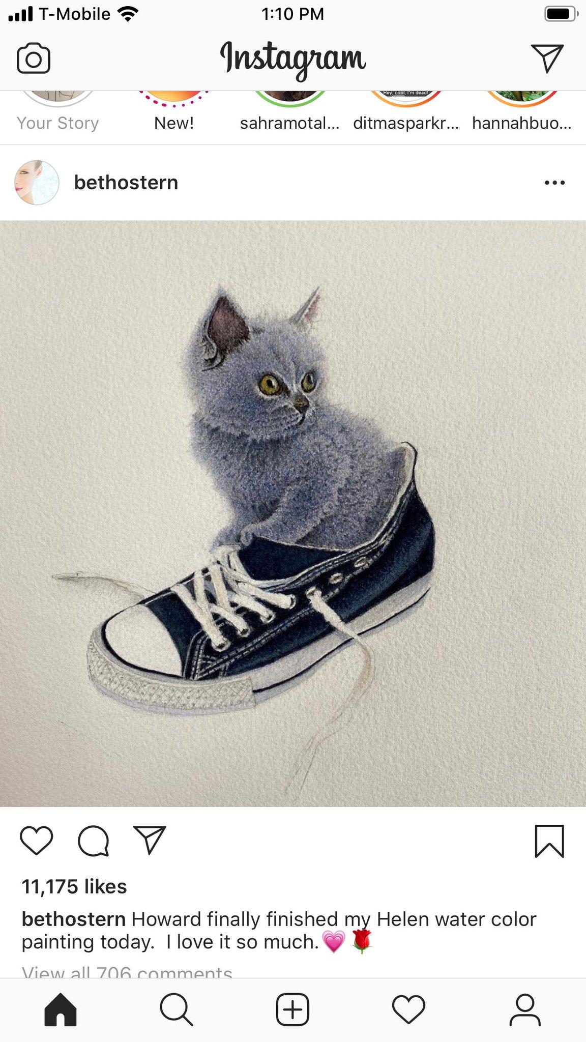 Howard Stern Cat Painting : howard, stern, painting, Twitter:,