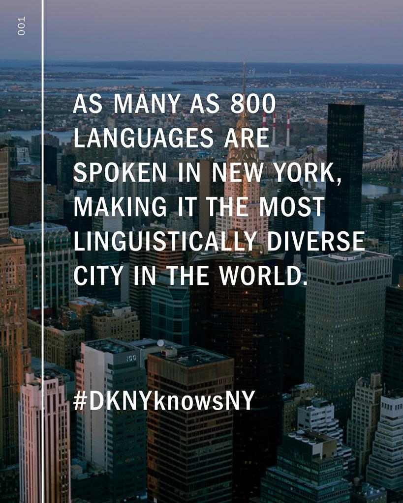 How Many Languages Are Spoken In Nyc : languages, spoken, Twitter:,