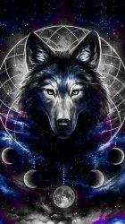 Iphone Wolf Wallpaper 4