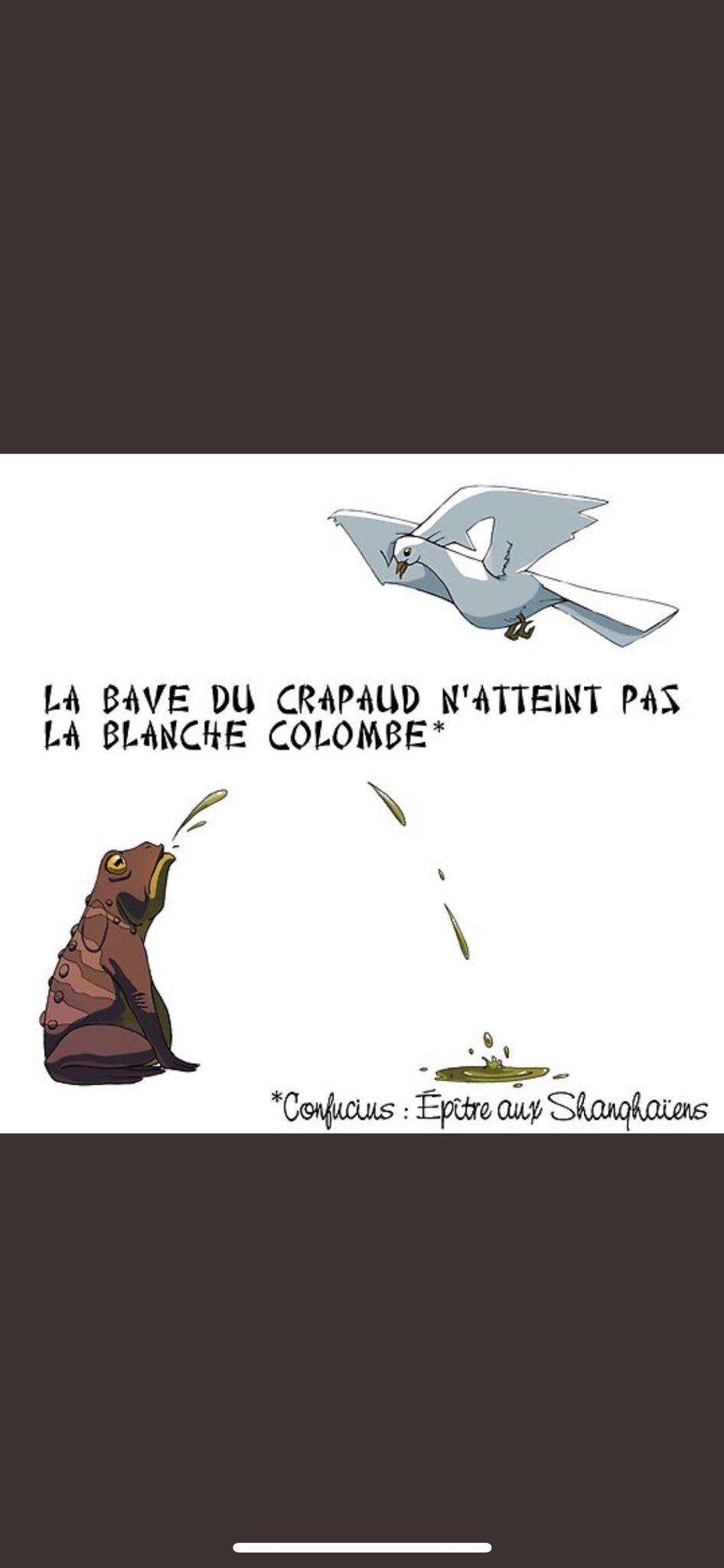 La Bave Du Crapaud N'atteint Pas La Blanche Colombe : crapaud, n'atteint, blanche, colombe, Twitter: