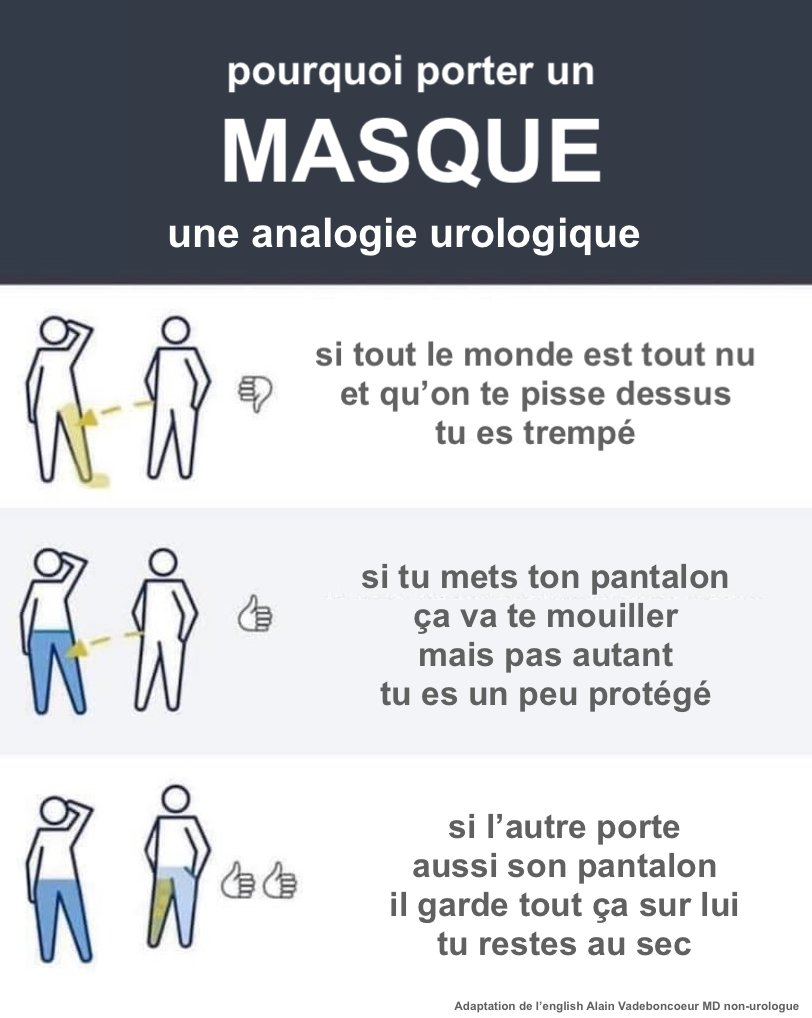 Qu Est Ce Qu Une Analogie : analogie, Alain, Vadeboncoeur, Twitter:,