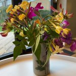 Kirsty Christer On Twitter Sorry To Hear You Re Poorly Really Hope You Re Better Soon No Funky Gifs But Have Some Virtual Flowers From My Garden Instead X Https T Co Mflryis1ye