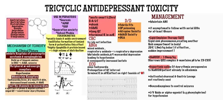 MedTweetorial: #Tweetorial Author: @maheen_ihsan  Type: #Pathophysiology #GraphicMed Specialty: #EM #EmergencyMedicine Topics: #TCAOverdose #TricyclicToxicity #TCAToxicity