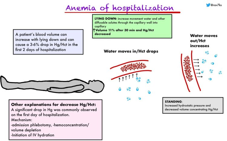 MedTweetorial: #Tweetorial Author: @rav7ks  Type: #Pathophysiology #MedEd Specialty: #IM #InternalMedicine #Hematology Topics: #Anemia #AnemiaOfHospitalization