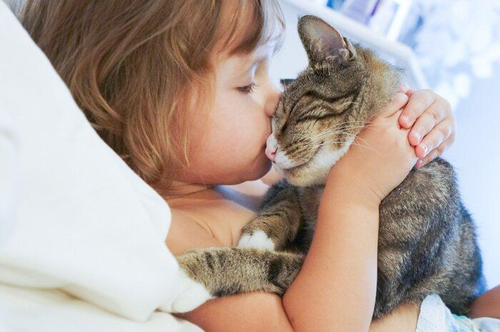 test ツイッターメディア - あなたが猫を好きになった「きっかけ」は?【いぬねこ絵本部】|ねこのきもちWEB MAGAZINE https://t.co/KkvuXESdg9 https://t.co/criSfRkZ6K