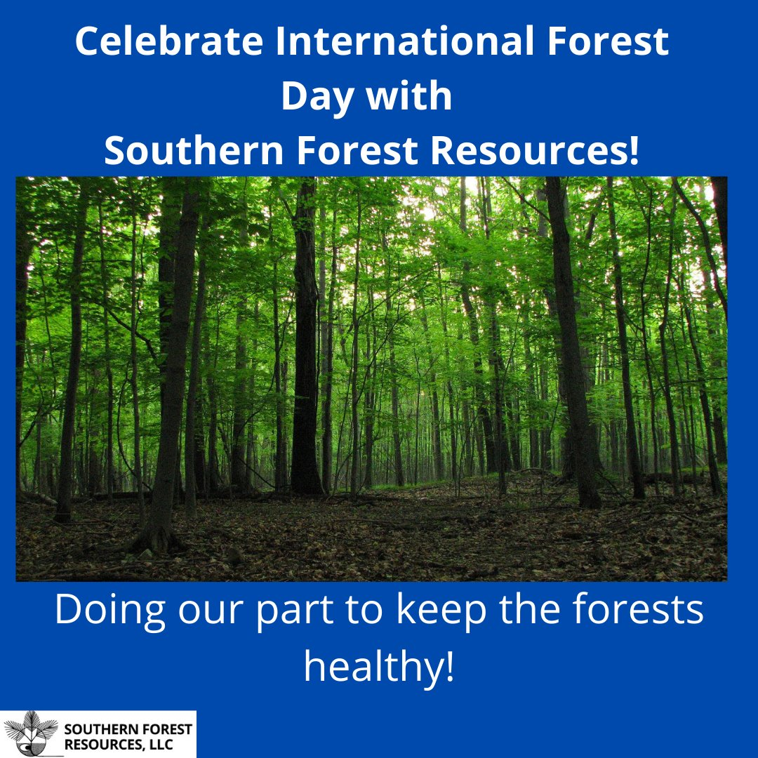 Designer read full profile one tree can start a forest; Southern Forest Resources Llc Sfr Llc توییتر