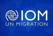 Head of Sub-office at IOM – International Organization for Migration