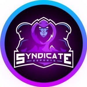 syndicate esports VGC Pinnacle Pokemon