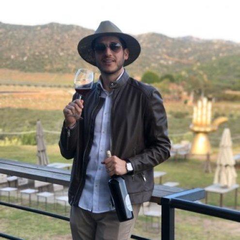 """Dani Viñedos Mex on Twitter: """"La uva, la planta, la tierra, el corcho, la  botella, la mano del hombre... ¿Sabes cuál es el único actor que falta en  esta fotografía? ¡Tú! Visita,"""