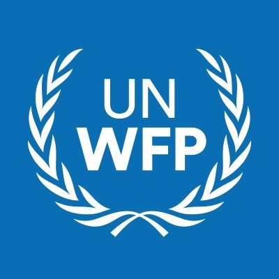 Programme Policy Officer (Protection) NOA at United Nations World Food Programme (WFP)