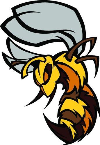killer bees barentin killerbeesfoot