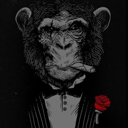 Afbeeldingsresultaat voor monkey mafia