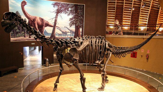 Titanosaurus dinosaur