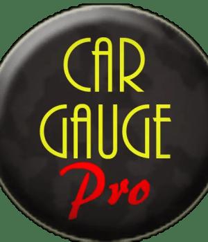 download car gauge pro for pc