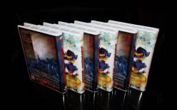 Splatterhouse & Magical Chase Deluxe Bundle 06