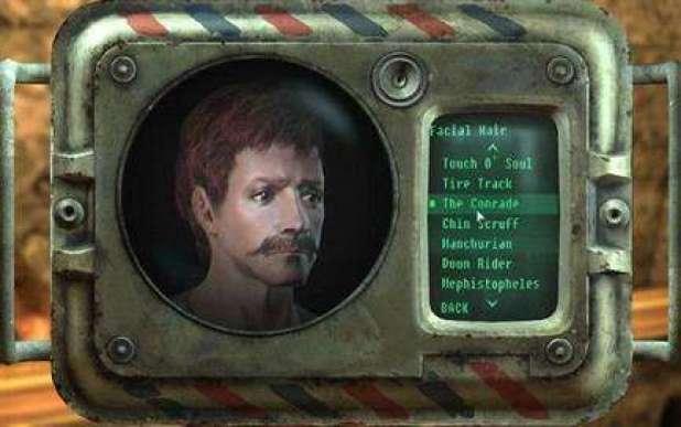 Fallout_custom