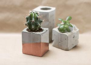 Concrete trend plants