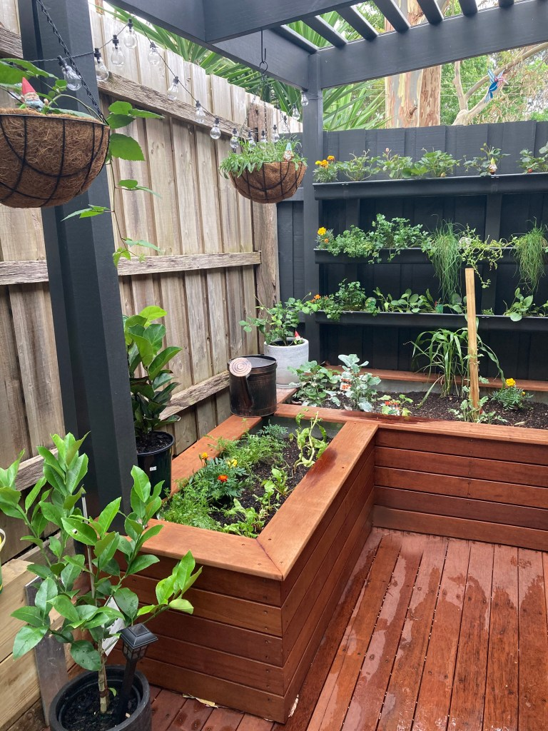 Deck, pergola, planter boxes