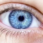 Where Do Blue-Eyes Really Come From?