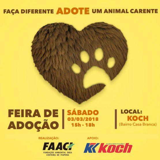 Sábado (03/03) tem feira de adoção em Itapema