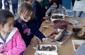 """Projeto """"Cultura Viva"""" apresenta a base da alimentação açoriana às crianças do NEI Pequeno Navegador"""