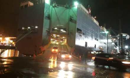 Berço 3 do Porto de Itajaí recebe desembarque de 1,2 mil veículos importados