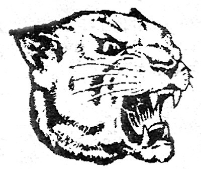 Pulaski County High School sports schedule