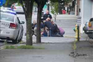 Pulaski man arrested for assaulting police officers