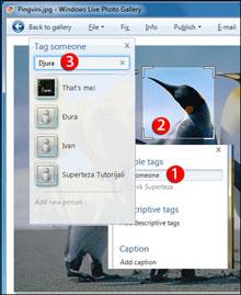Superteza: Windows Live Photo Gallery