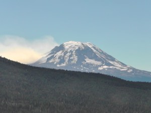 Cougar Fire on Mt Adams