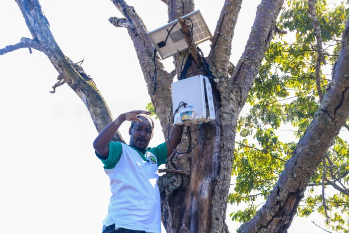 Jaguza Technologies CEO & Founder; Ronald Katamba installing a radar and an RFID on the farm. Photo by: OLUPOT NATHAN ERNEST/PC TECH MAGAZINE
