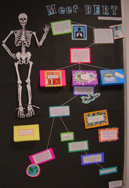 Students Present Posters For National Radiologic