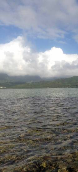 Another view of Kaneohe Bay, with the coral reef visible in the foreground.