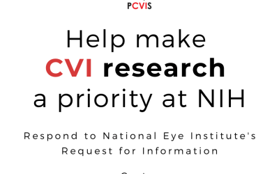 Help Promote Further CVI Research