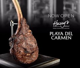 Harry's Steakhouse & Raw Bar | Cancun