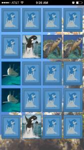 ocean_match