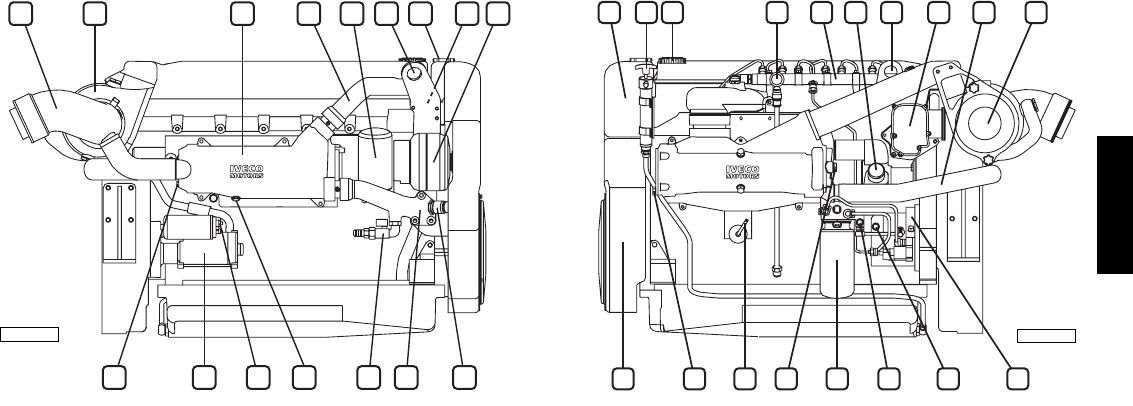 Page 8 of Iveco Automobile Parts N67 ENT M45 User Guide