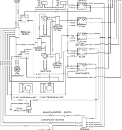 wiring traulsen diagrams t34904c10 opinions about wiring diagram u2022 defrost termination switch wiring diagram traulsen wiring diagrams [ 849 x 1228 Pixel ]